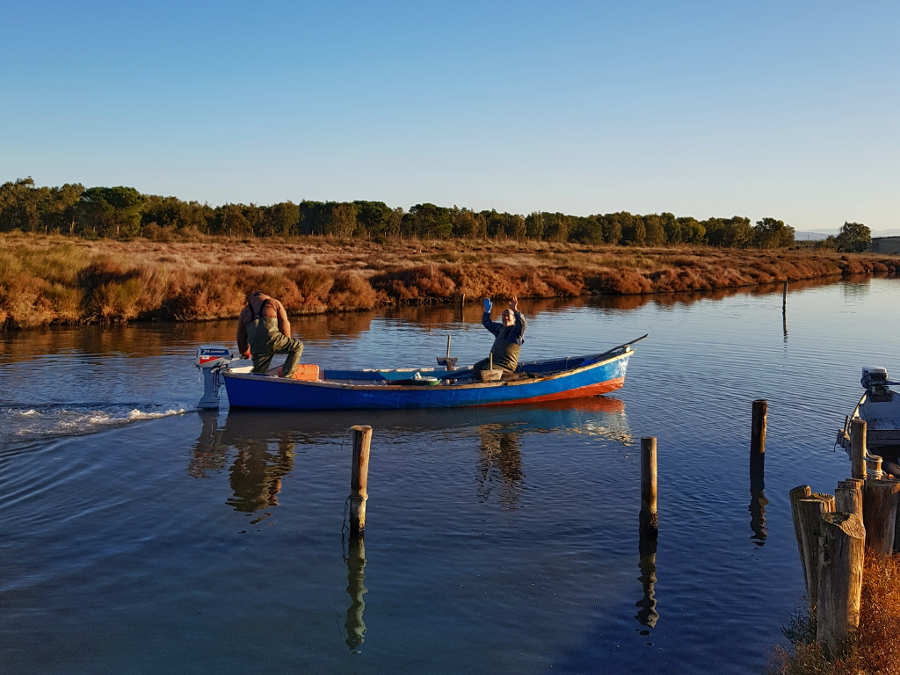 sena-arrubia-pescata-laguna